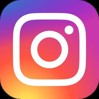 PI icone instagram