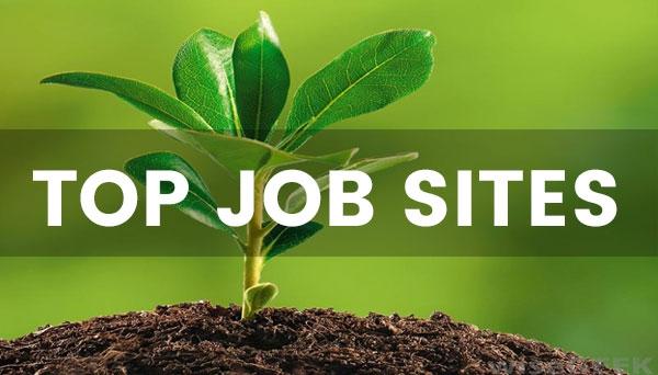 25 sites pour trouver un stage ou un emploi quand on est étudiant en SVTE