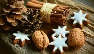 Vacances de Noël au PFVU