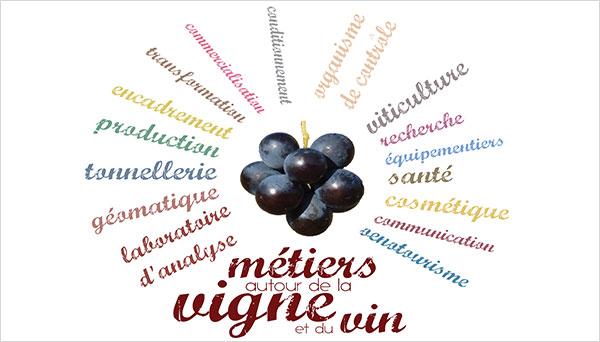 la filière de la vigne et du vin fait intervenir de très nombreux métiers
