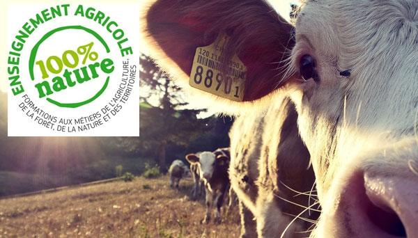 Concours de l'enseignement agricole