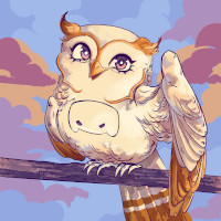 Owl In One